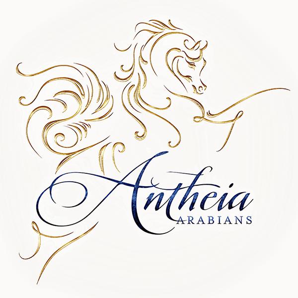 site_icon_antheia